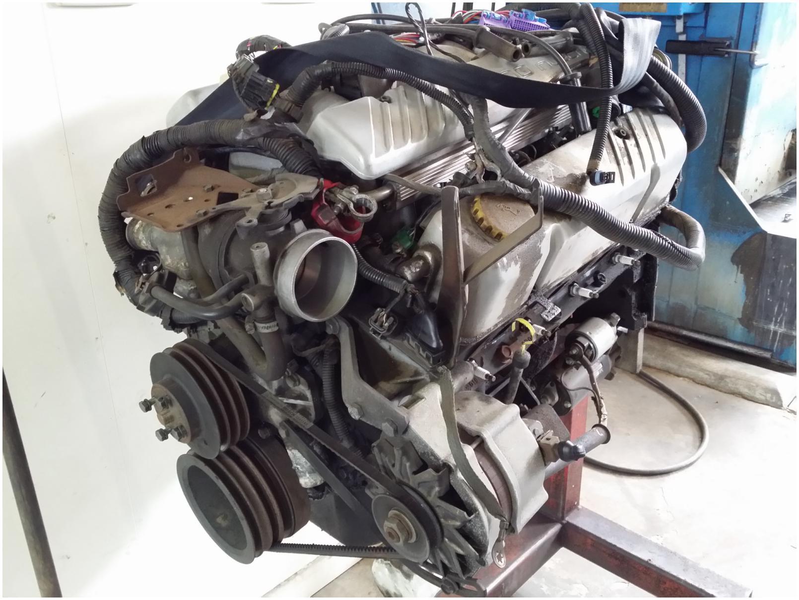 Holden V8 Project Engine